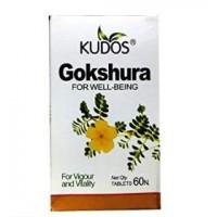 Gokshura Kudos 60 tab
