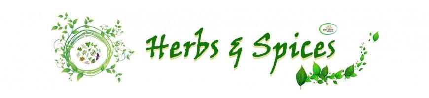 Raw Herbs - Jadi Booti